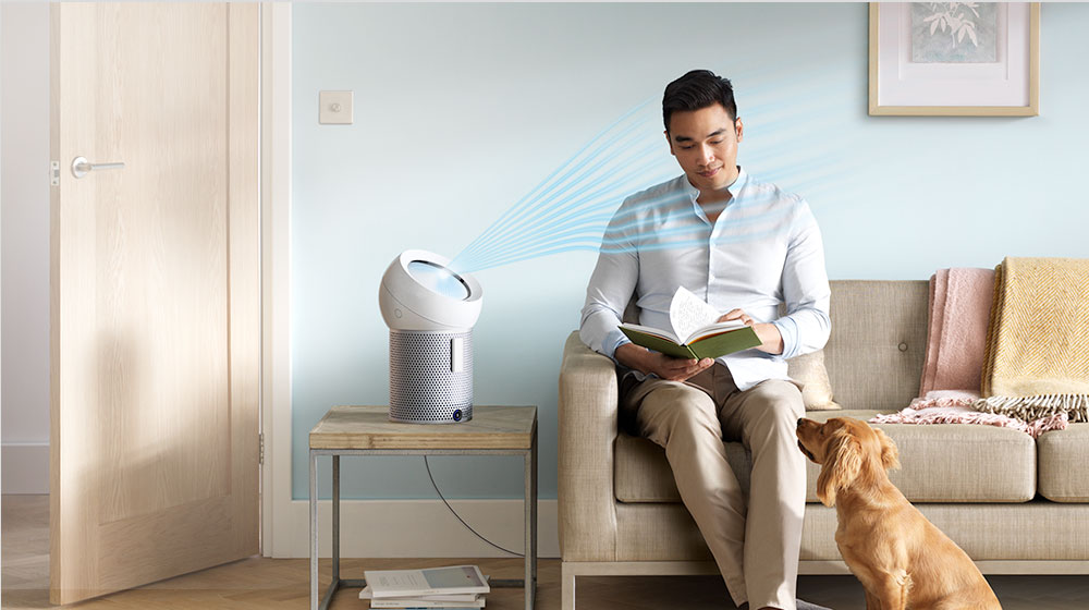 A man reads while his dog watches as a Dyson personal purifier fan projects cooling airflow at him